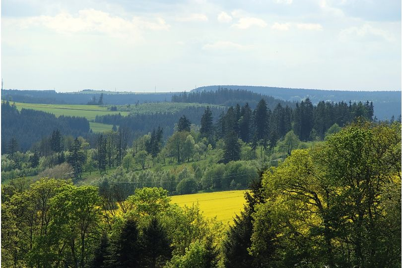 Mitten im Thüringer Wald am Rennsteig